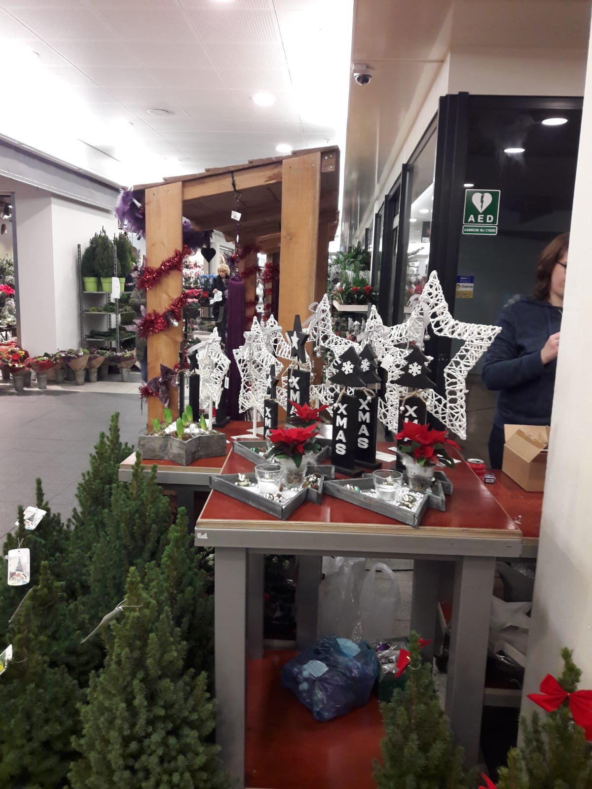 kerst-meerzicht (7)